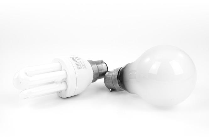 bulb-15629_1280
